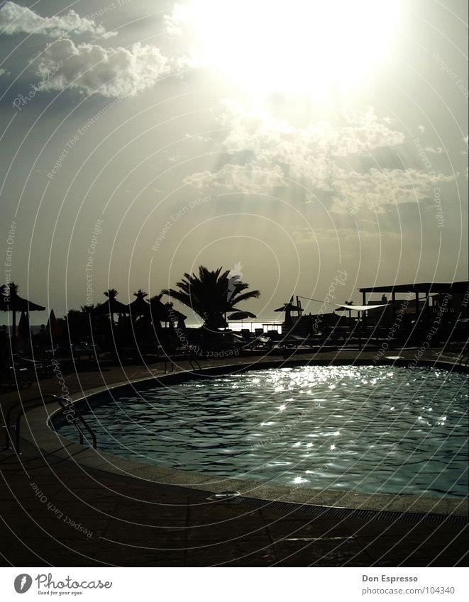 Sonnenbrandgefahr Stil Erholung ruhig Schwimmbad Freizeit & Hobby Ferien & Urlaub & Reisen Sommer Wolken Wärme heiß Einsamkeit Palme Ibiza Physik Sonnenschirm