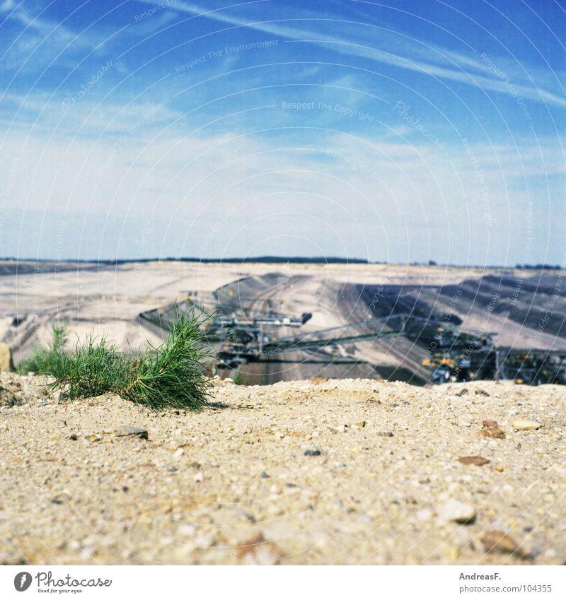 F-60 Cottbus Brandenburg Braunkohle Braunkohlentagebau Bergbau Mittelformat Steppe Dürre trocken Pflanze Industrie Wüste Lausitz welzow Sand Landschaft Brücke