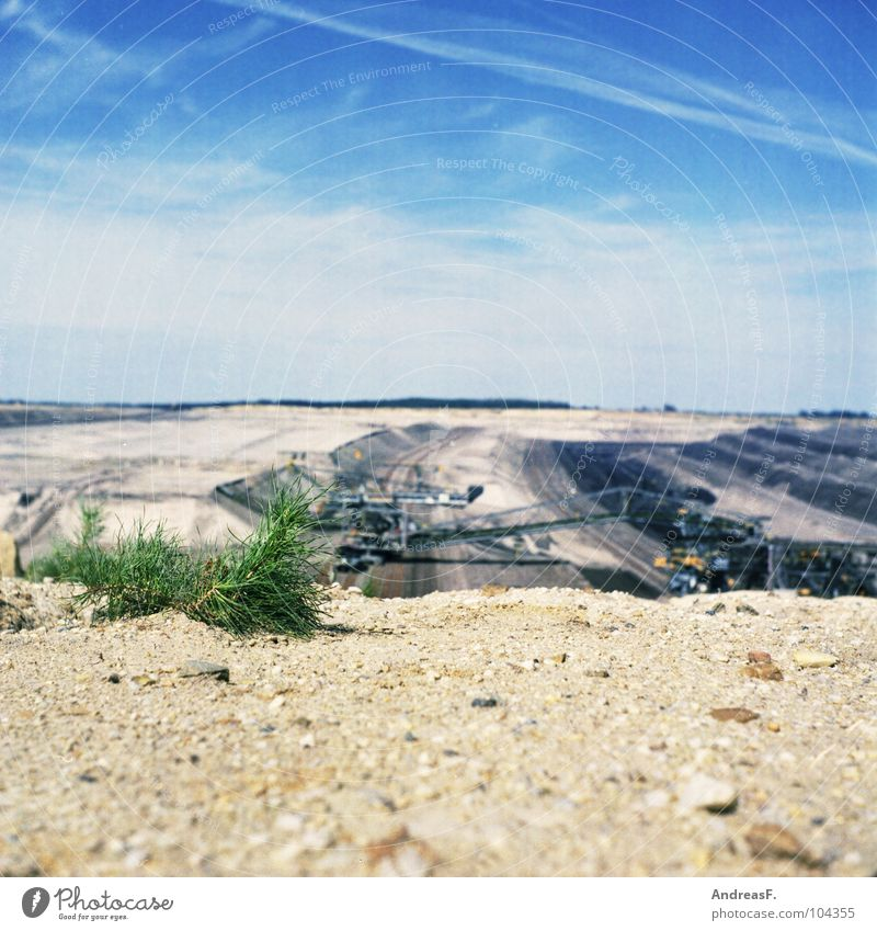F-60 Natur Pflanze Sand Landschaft Industrie Brücke Technik & Technologie Wüste trocken Steppe Dürre Kohle Bergbau Brandenburg Kiefer Cottbus