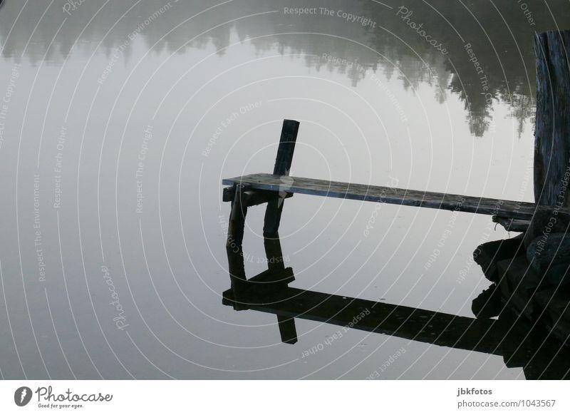 120 I ruhiges Plätzchen Umwelt Natur Landschaft Urelemente Wasser Schönes Wetter Nebel Pflanze Baum Küste Seeufer Bucht lake Bras D`Or beobachten Steg Holzbrett