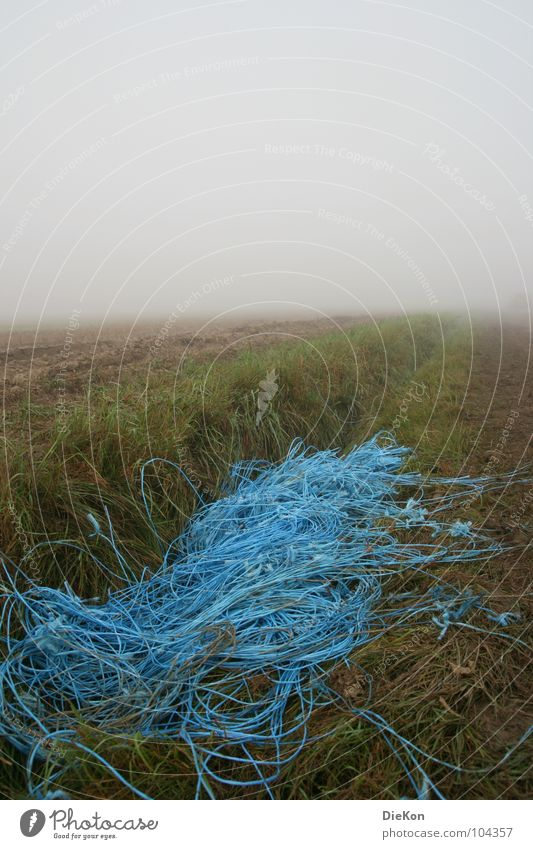 Nebel blau Gras Sand Regen Feld Erde
