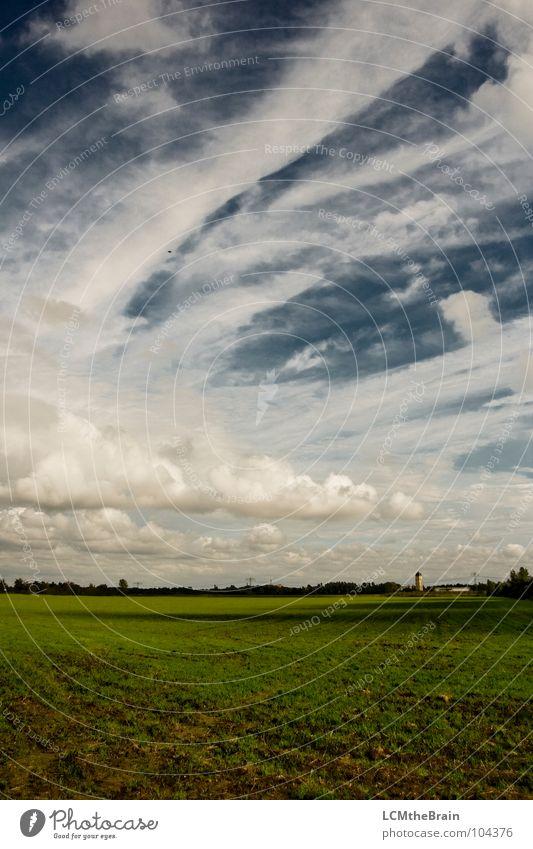 Weites Land Natur Himmel blau Sommer ruhig Wolken gelb Wiese Gras Landschaft Feld Abenddämmerung Wolkenbild