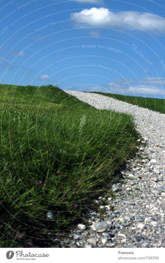 Feldweg 1 Fußweg Gras steinig Wegrand Allgäu Sommer Wege & Pfade Himmel Stein