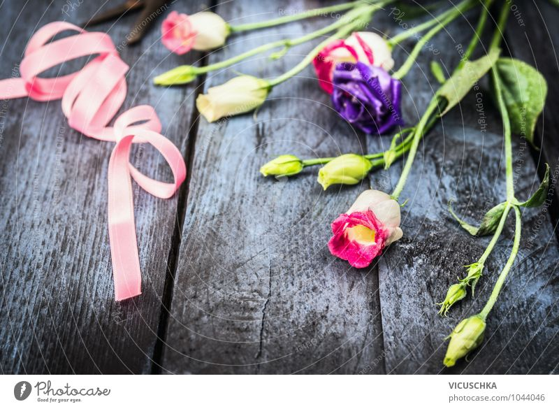 Blumen mit rosa Schleife Natur blau Pflanze Sommer Farbstoff Herbst Frühling Stil Feste & Feiern Hintergrundbild Garten Freizeit & Hobby Design