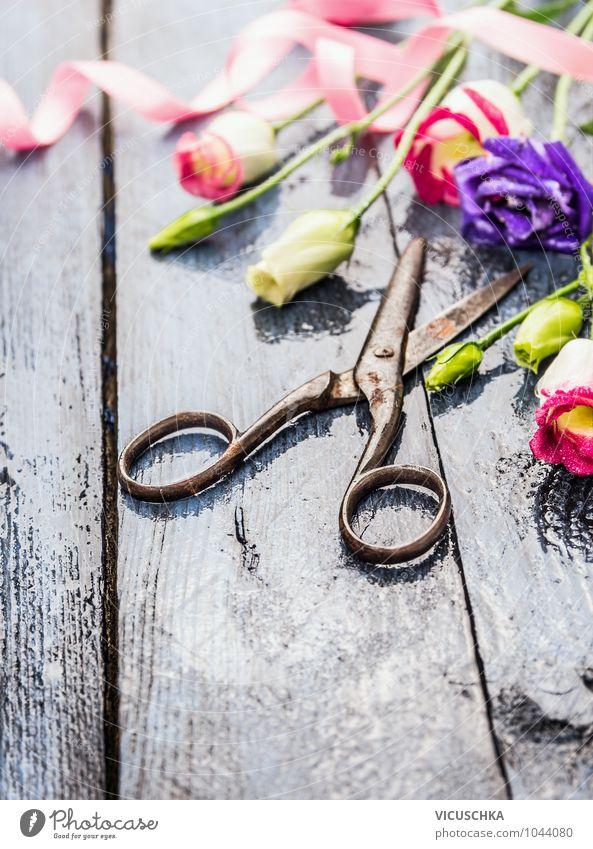 Blumen und alte Schere auf nassem Holztisch Lifestyle Stil Design Freizeit & Hobby Garten Dekoration & Verzierung Pflanze Frühling Sommer Herbst Blumenstrauß