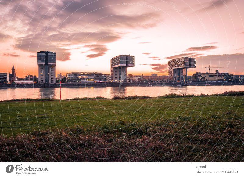 Kranhäuser Himmel Ferien & Urlaub & Reisen Stadt Wasser Sommer Leben Architektur Wiese Gebäude rosa Häusliches Leben modern Glas Hochhaus Beton Schönes Wetter