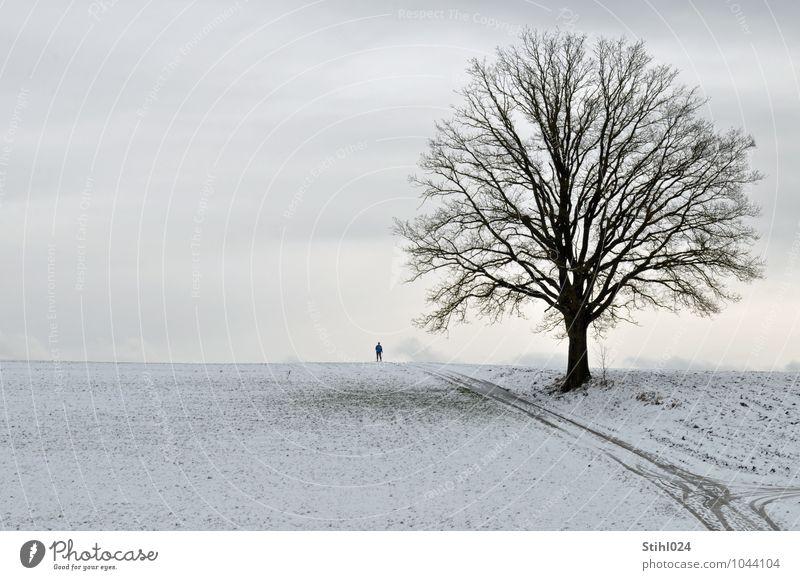 Winterspaziergang # 60 Ausflug Schnee Winterurlaub wandern Spaziergang 1 Mensch Natur Landschaft Urelemente schlechtes Wetter Hügel Erholung frieren kalt grau