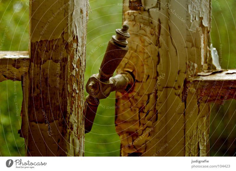 Kinderheim Fenster Griff Fensterrahmen verfallen Aussicht grün Holz Verfall Sanatorium Heilstätte Goslar Ruine kaputt unheimlich Farbe Vergänglichkeit