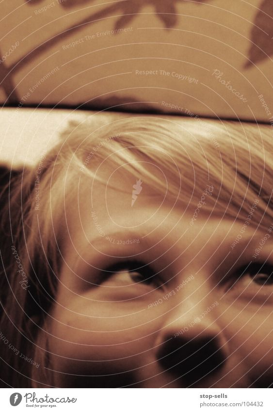 Behütet II Spielen verträumt Lampenschirm Porträt Frau Mädchen König Geborgenheit lachen Blick Auge Nase Schatten Mensch Baumkrone Haare & Frisuren gold