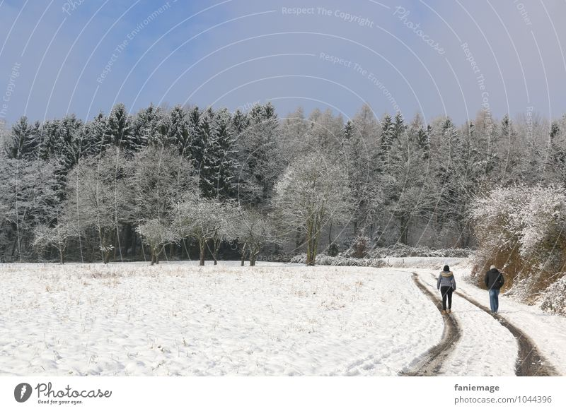 Schneespaziergang Lifestyle Erholung Winter 2 Mensch Natur Landschaft Schneefall Feld Wald gehen genießen blau grün weiß Winterspaziergang Spazierweg