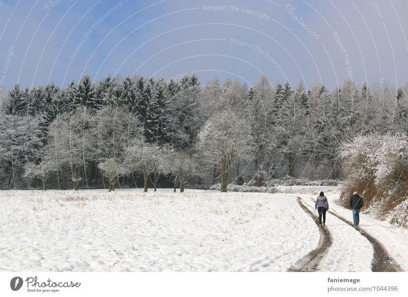 Schneespaziergang Mensch Natur blau grün weiß Baum Erholung Landschaft Winter Wald kalt Wege & Pfade gehen Lifestyle Schneefall