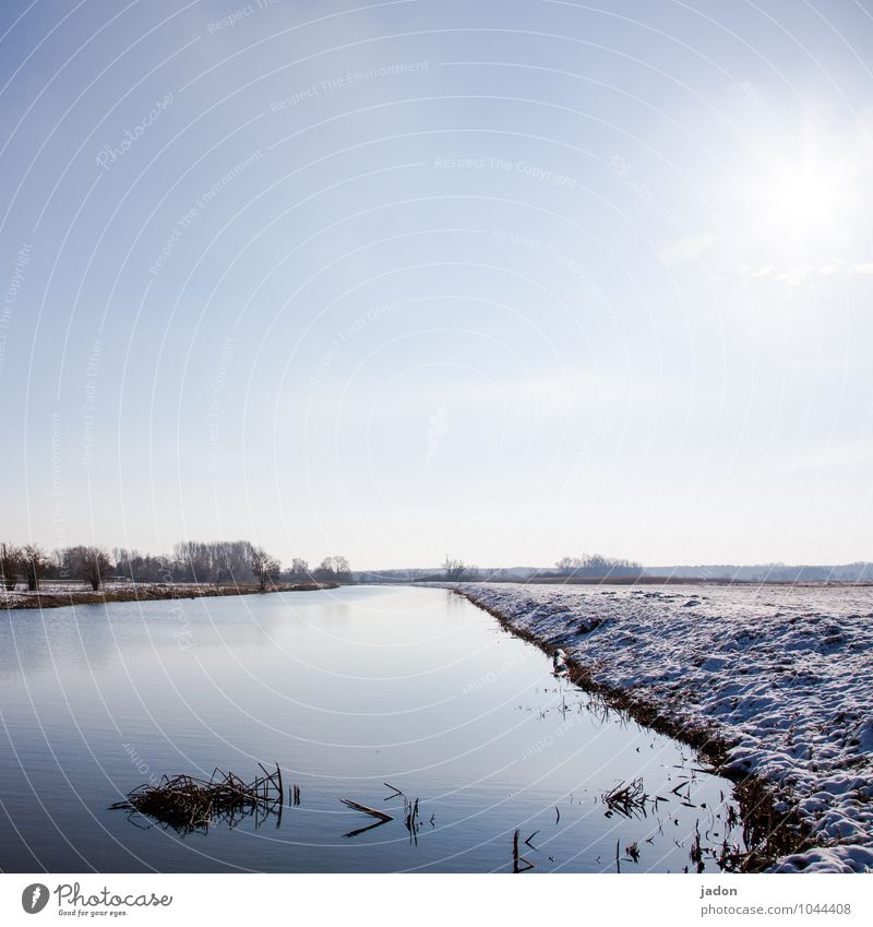 stilles wasser. Winter Schnee Umwelt Natur Landschaft Schönes Wetter Gras Wiese Feld Flussufer kalt maritim nass Einsamkeit Zufriedenheit Idylle Pause Wasser