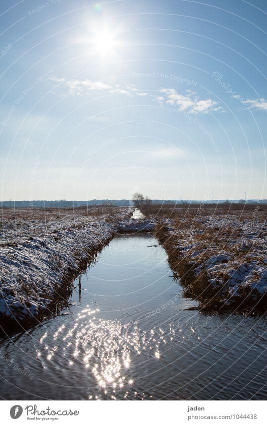 winterabschied. Umwelt Natur Landschaft Wasser Himmel Horizont Sonne Frühling Winter Schönes Wetter Eis Frost Schnee Gras Feld Bach Unendlichkeit kalt ruhig