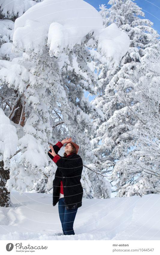 Gott bewahre! Winter Schnee Winterurlaub Junge Frau Jugendliche Erwachsene 1 Mensch 18-30 Jahre Natur Baum Mütze brünett langhaarig beobachten Blick bedrohlich