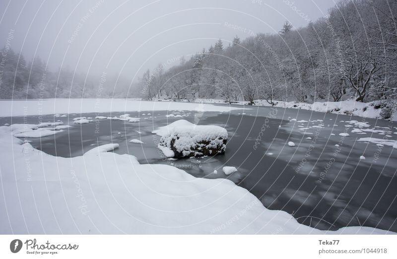 Wintersee Ferien & Urlaub & Reisen Umwelt Natur Landschaft Wasser Eis Frost Hagel Schnee Schneefall ästhetisch authentisch Gefühle Farbfoto Gedeckte Farben