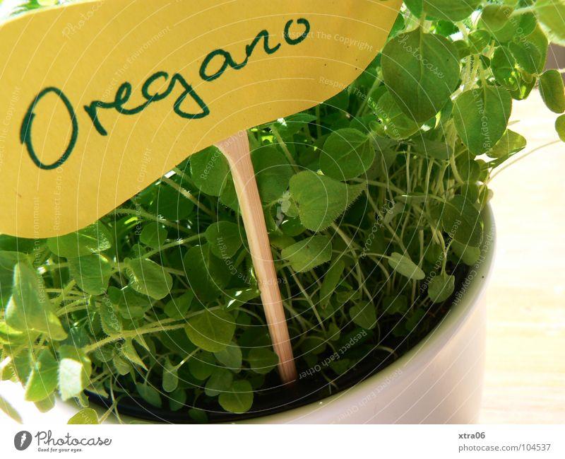 hoffentlich wirds ne serie :) weiß grün Pflanze gelb Ernährung Graffiti Wand Holz klein Erde Schilder & Markierungen Wachstum Schriftzeichen planen Kochen & Garen & Backen Küche