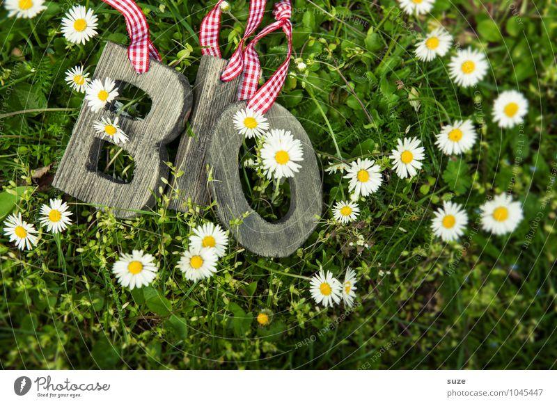 BiO Gras Natur grün Gesunde Ernährung Umwelt Wiese Frühling natürlich Holz Gesundheit Lebensmittel Lifestyle Freizeit & Hobby Dekoration & Verzierung frisch