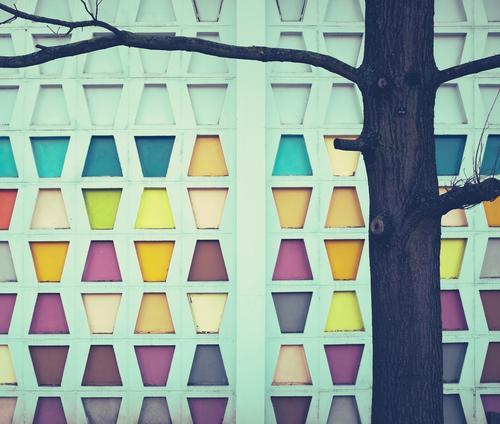 Freizeitspaß | 4 gewinnt Farbe schön Baum Architektur Stil Gebäude Kunst Mauer Fassade Design retro Dekoration & Verzierung Ordnung Kreativität einfach