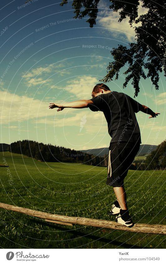 balanceakt Himmel Mann blau grün Wiese Berge u. Gebirge Spielen Holz Junge gehen Zufriedenheit Arme Baustelle Hügel Klettern Weide