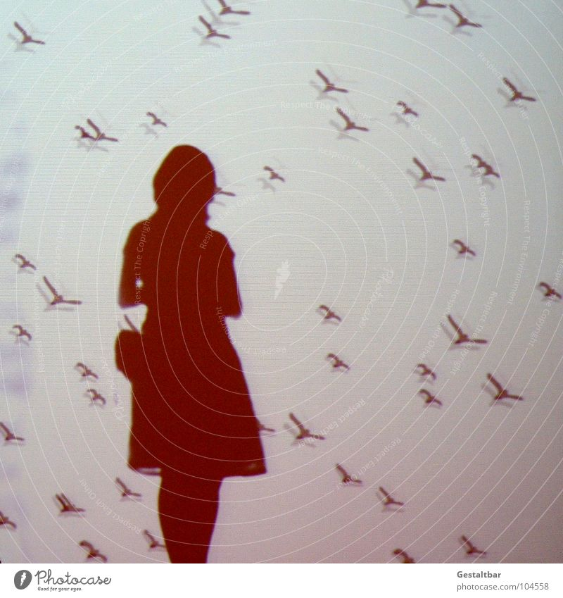 Schattenspiel 08 Vogel Frau feminin Silhouette frei geheimnisvoll In sich gekehrt Denken Tasche Porträt Aussicht Gute Laune gestaltbar Ausstellung