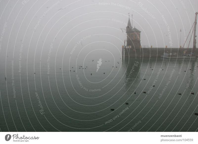 Herbstdepression bei Konstanz Meer dunkel Traurigkeit Angst Nebel Trauer Verzweiflung