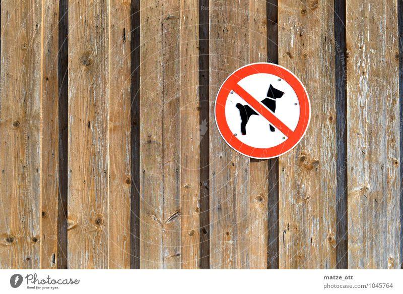 Hier bitte keine Hunde!! Mauer Wand Tier Haustier 1 Holz Verbote Holzwand Scheune Schilder & Markierungen Verbotsschild Gassi gehen Schäferhund Pudel Terrier