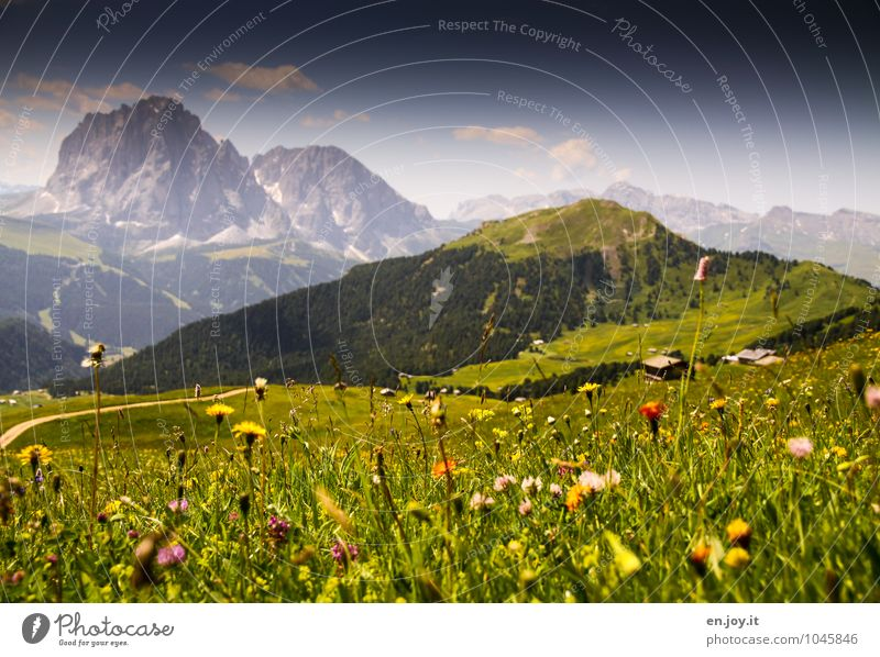 Sommer, war das schön! Natur Ferien & Urlaub & Reisen grün Erholung Landschaft ruhig Ferne Berge u. Gebirge Wiese Frühling Felsen Zufriedenheit Fröhlichkeit