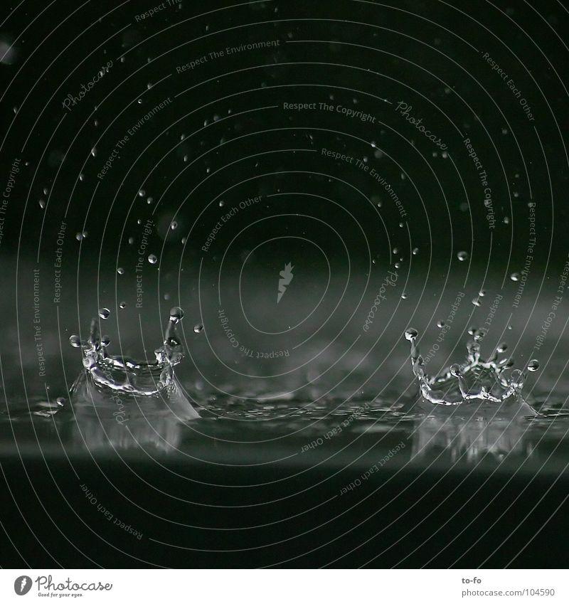 Regen Wasser Wetter nass Wassertropfen Ewigkeit Ziel Unwetter Momentaufnahme Baumkrone Gewitter spritzen Krone Kollision