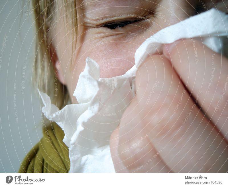 Niesen... Katze Frau Hand Mädchen Sommer Winter kalt Luft Nase Erkältung Krankheit Jahreszeiten atmen Staub Pollen Allergie