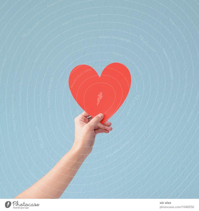 ILY Valentinstag Muttertag Hochzeit feminin Arme Hand Zusammensein positiv blau rot Gefühle Glück Frühlingsgefühle Leidenschaft Liebe Verliebtheit Romantik