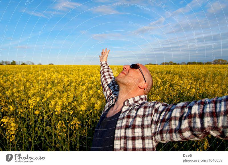 Male - free in the field Mensch Natur Mann blau Sommer Sonne Erholung Freude Umwelt Erwachsene Leben Blüte Frühling Glück lachen Freiheit
