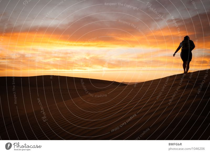 Leben wüst, einsam aber schön... Mensch Frau Natur Ferien & Urlaub & Reisen gelb Erwachsene Sand Zufriedenheit Kraft wandern Abenteuer Hoffnung Unendlichkeit