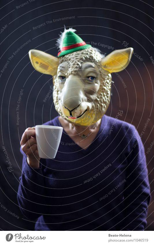 wenn Lämmer über die Stränge schlagen blau grün weiß Freude Tier feminin Feste & Feiern außergewöhnlich leuchten Lächeln genießen Lebensfreude trinken Kaffee Fell Hut