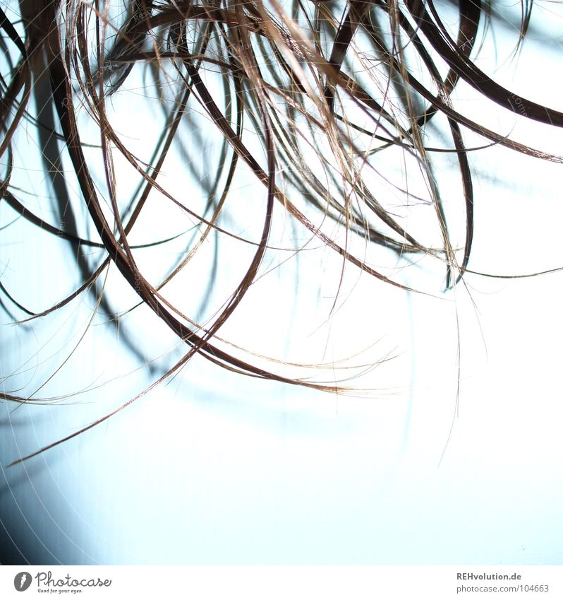 haar-ensemble 6 krause Haare zerzaust kalt Haare & Frisuren Wellness Wellen braun grün langhaarig gewaschen nass feucht Friseur Schwimmbad Haarschnitt Bad