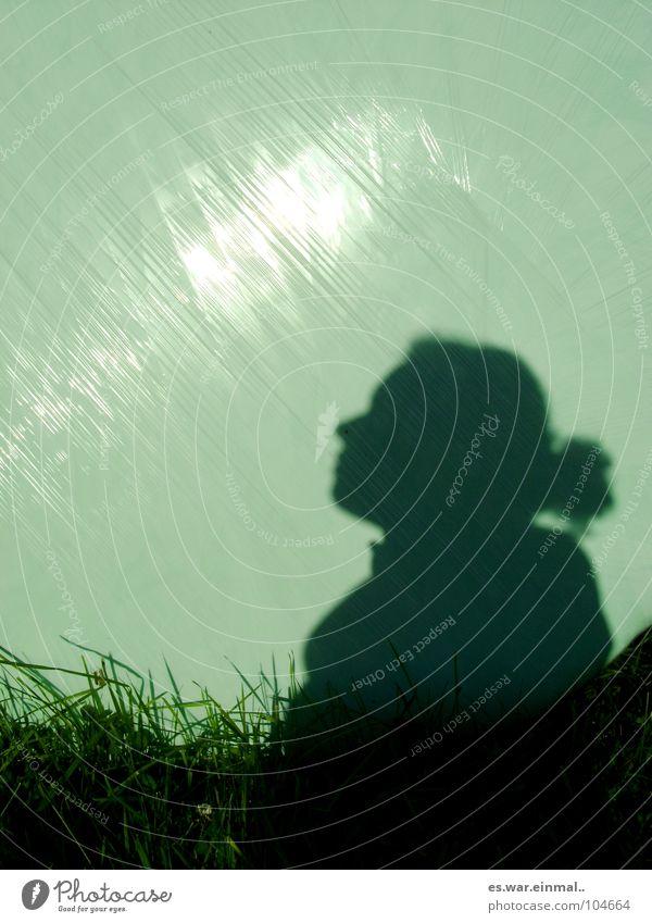 fake. Gras Heuballen verpackt Spiegel Reflexion & Spiegelung Hoffnung gegen Schatten Falte Sonne hell shadow shadows