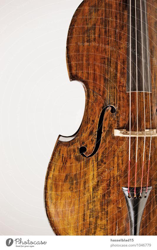 Fidel Reichtum harmonisch ruhig Freizeit & Hobby Musik Geige Kontrabass Saiteninstrumente Klassik Musikinstrument Maserung Werkstatt Produktfotografie Gehörsinn
