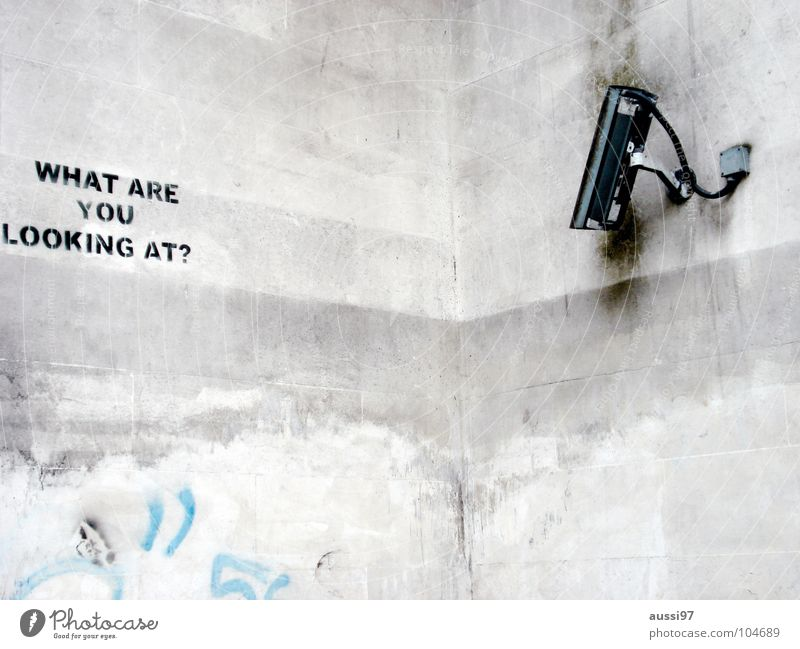 Closed Circuit Television Angst Sicherheit Fotokamera Medien Amerika Panik England Überwachung spionieren überwachen Überwachungskamera Hyde Park präventiv