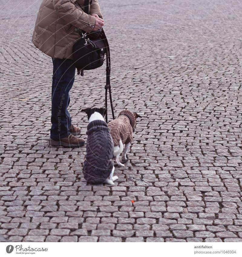 Gute Freunde kann niemand trennen Lifestyle Stil Freude Glück Freizeit & Hobby Gassi gehen Stadt Altstadt Platz burgplatz Jeanshose Jacke Stoff Fell