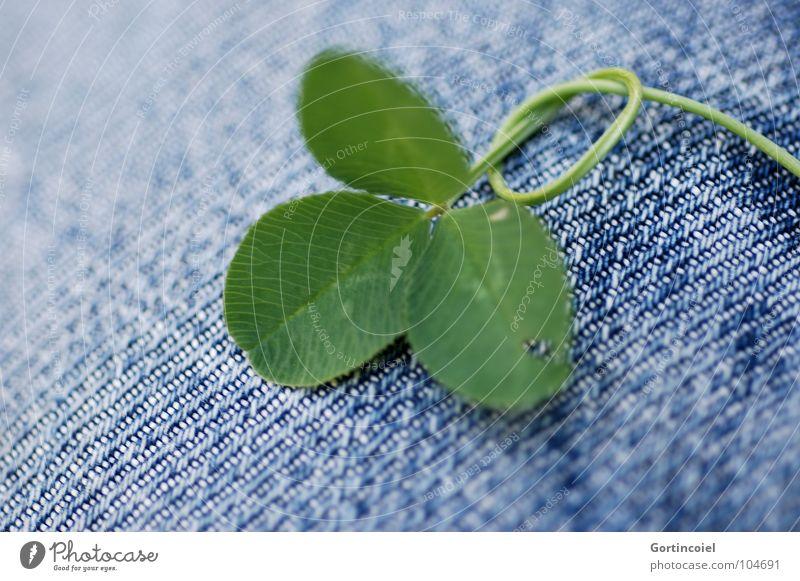 Darf es noch ein Stückchen Zucker sein? Glück Pflanze Klee Kleeblatt Halm Hose Jeanshose Stoff Knoten Glücksbringer grün Optimismus Glücksklee Stengel Unkraut