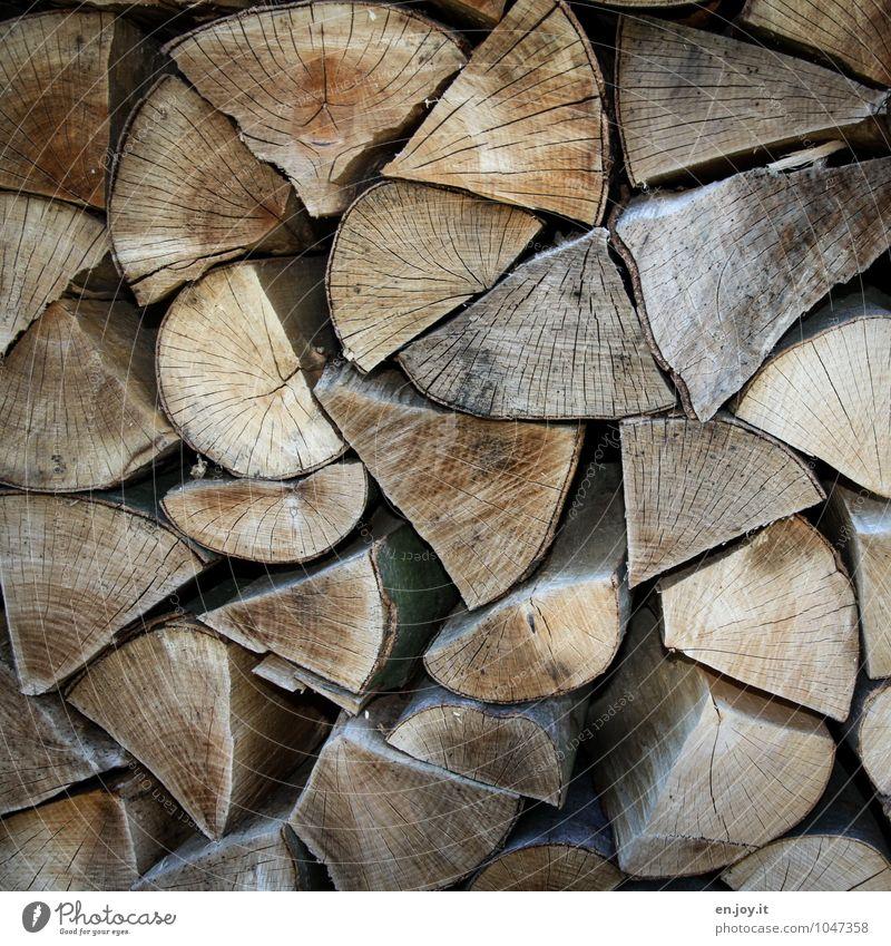 Der nächste Winter kommt bestimmt! Holzstapel Brennholz eckig nachhaltig natürlich Spitze trocken braun Zufriedenheit Geborgenheit kalt Klima Natur Umwelt