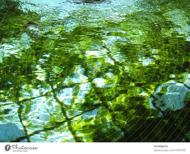 Algengrün an Wasserblau wellig dunkelgrün Licht Reflexion & Spiegelung Sommer Fliesen u. Kacheln Becken Kräuselung. Hellblau