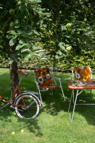 schatten. Freude Freizeit & Hobby Ferien & Urlaub & Reisen Tourismus Ausflug Camping Fahrradtour Sommer Sommerurlaub Garten Stuhl Umwelt Natur Landschaft Erde