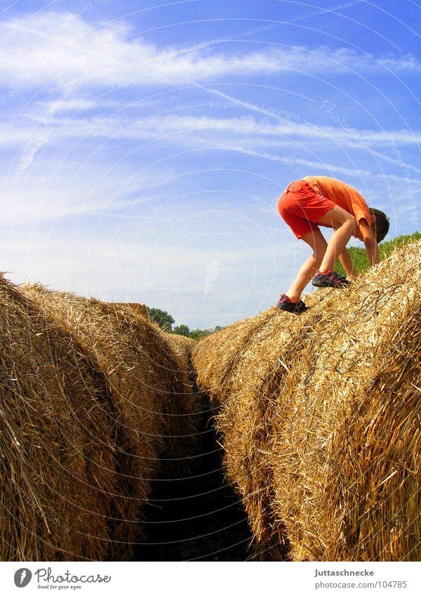 Von den blauen Bergen... Kind Natur Sommer Freude Junge Herbst springen Spielen oben Freiheit Glück Feld frei hoch Klettern Kindheit