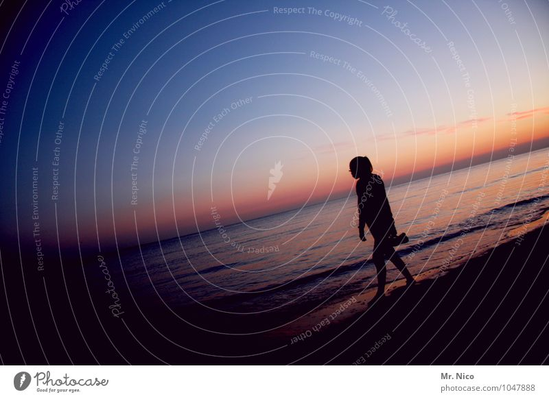 77° Fahrenheit Natur Ferien & Urlaub & Reisen Sommer Erholung Meer Einsamkeit Landschaft ruhig Strand Ferne Umwelt feminin Freiheit Freizeit & Hobby
