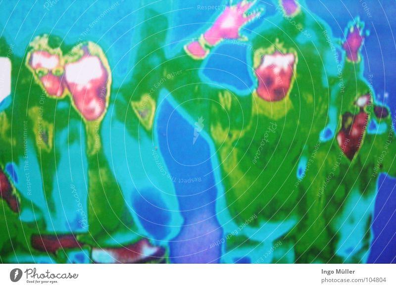 Das Universum in Bremen Mensch Mann blau grün rot kalt Wärme Menschengruppe Kunst Technik & Technologie Physik Weltall Wissenschaften Sehenswürdigkeit