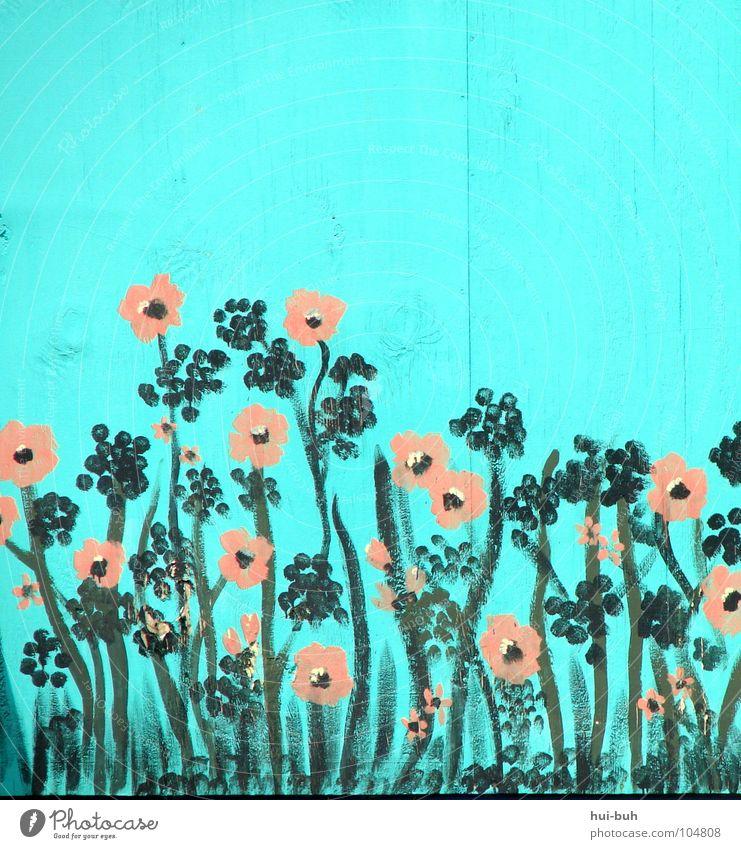 Blühe deutsches Vaterland.. schön alt Blume Sommer Haus Farbe Wand springen Blüte Gras Frühling Holz frisch Wachstum Stengel