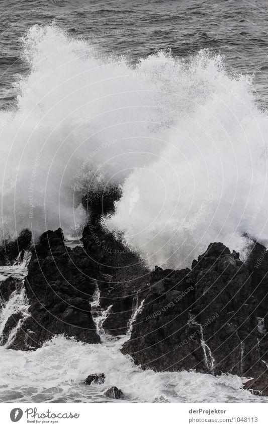 Die Gewalt des Meeres Ferien & Urlaub & Reisen Tourismus Ausflug Abenteuer Ferne Freiheit Umwelt Natur Pflanze Urelemente Wasser Winter schlechtes Wetter Felsen