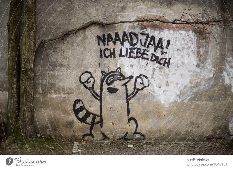 Liebeserklärung Ferien & Urlaub & Reisen Tier Freude Umwelt Wand Graffiti Gefühle Berlin Mauer Glück Tourismus Wildtier authentisch Schriftzeichen Lebensfreude