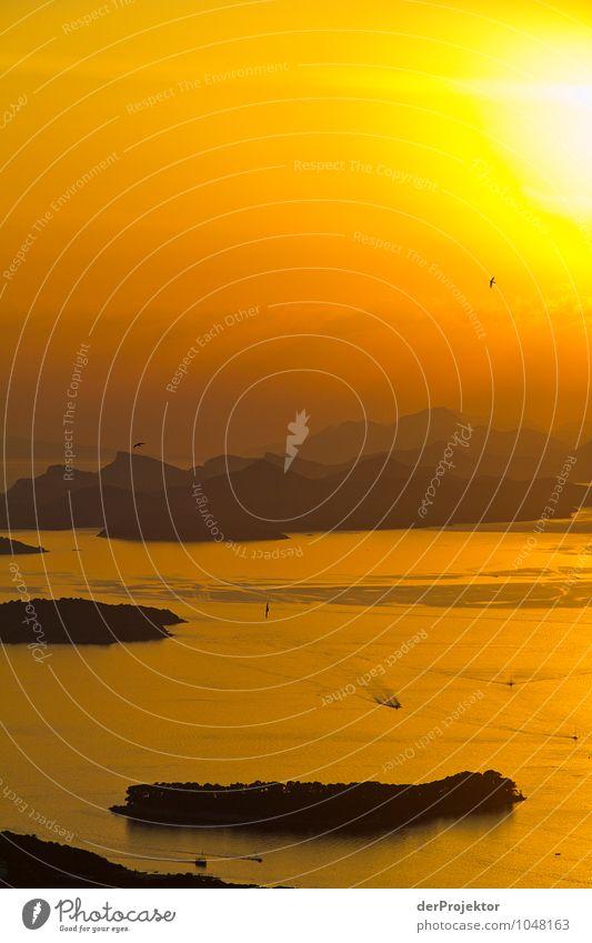 Sonnenuntergang über Dubrovnik Natur Ferien & Urlaub & Reisen Pflanze Sommer Meer Landschaft Tier Ferne Strand Berge u. Gebirge Umwelt Gefühle Küste Freiheit Felsen Zufriedenheit