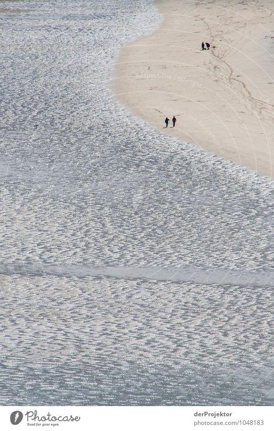 Strandspaziergang bei Ebbe Mensch Natur Ferien & Urlaub & Reisen Pflanze Erholung Meer Landschaft Ferne Umwelt Frühling Gefühle Küste Freiheit Paar Tourismus